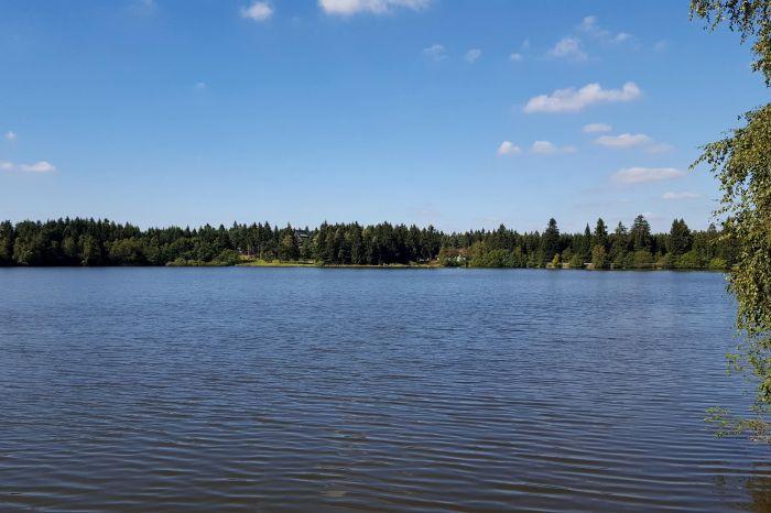 Rybník Sykovec - 2200 x 1237